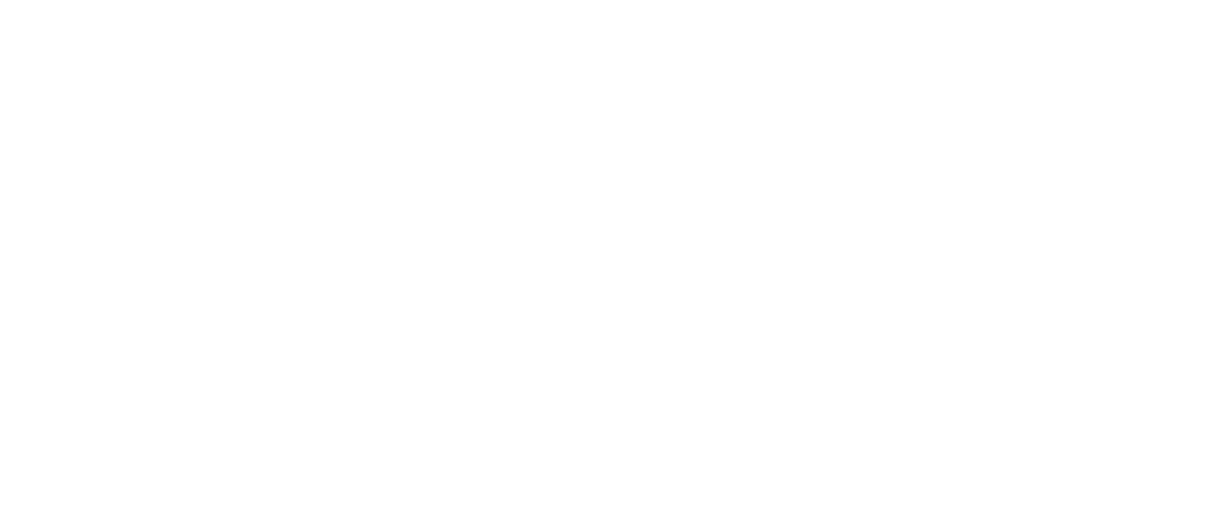 Logo PV-Vlaanderen